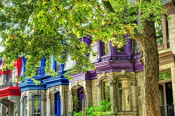 Montreal has a diverse array of plexes with plenty of character and charm